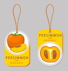 the persimmon vector image