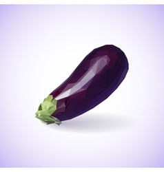 Unusual trendy poly style eggplant isolated on vector