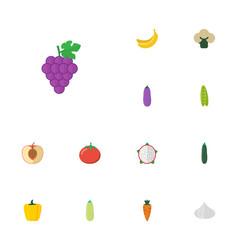 Flat icons pumpkin jungle fruit aubergine and vector