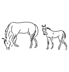 Foal and mare vector