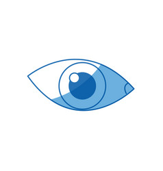 Cartoon eye human vision look watch icon vector