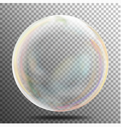 Multicolored transparent soap bubble on a plaid vector