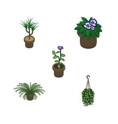Isometric houseplant set of blossom flower plant vector