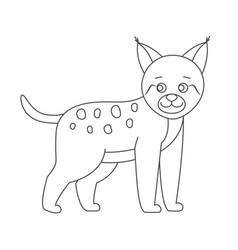 Lynx for coloring book vector
