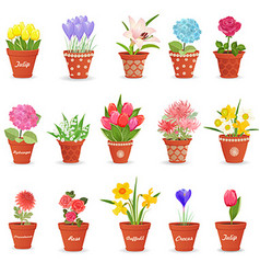romantic collection of cute flowerpots with vector image