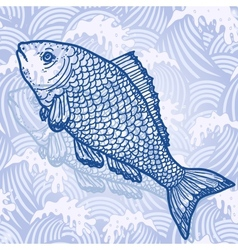 Sea fish vector image