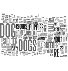 Are you ready for a dog text word cloud concept vector