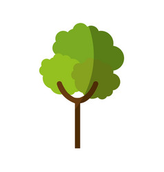 Nature tree symbol vector