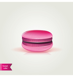 Sweet macaroons vector