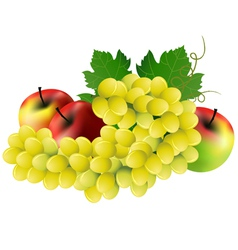 Image of grape three red apples on white vector