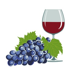 Grapes and a wine glass vector