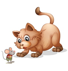Brown cat looking at little mouse vector image vector image