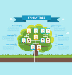 Cartoon family tree infographic card poster vector