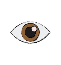 Eye look watch vision optic icon vector