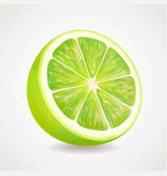 Fresh lime fruit realistic 3d vector