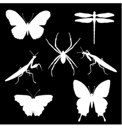 insect set2 vector image vector image