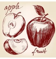 Apple fruit set hand drawn llustration vector