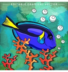 Colorful aquarium fish vector