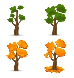 A stylized drawing of oak Different times of the vector image vector image