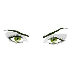 Green eyes vector image vector image