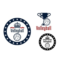Volleyball sport game heraldic emblems vector image vector image