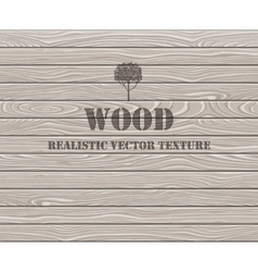 Wooden plank texture background vector image