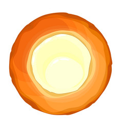 cheesecake with cheese top view of round bread vector image