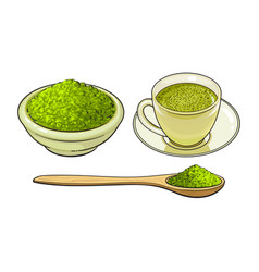 sketch green mathca tea set vector image