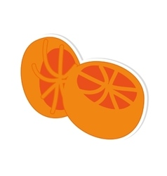 Orange fruit food vector