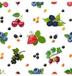 Fresh berries seamless colorful pattern vector