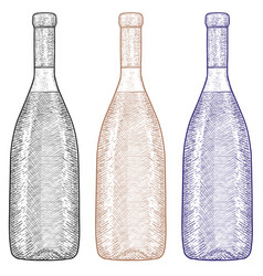 bottle of wine hand drawn sketch vector image