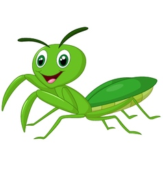 Cartoon praying mantis vector