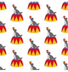 seal in circus pattern vector image vector image