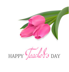 teachers day card with tulips vector image vector image