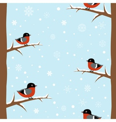 Cute winter bullfinch bird seamless pattern vector