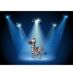 A zebra at the stage with spotlights vector