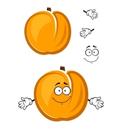 Cartoon cute apricot fruit character with fuzzy vector