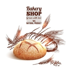Bakery sketch concept vector