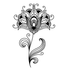 Ornate persian floral design vector