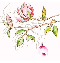 decorative spring flowers vector image