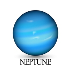 Planet neptune white background vector