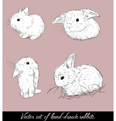 Vintage set with cute rabbits vector