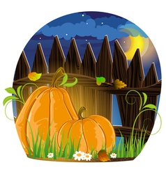 Autumn pumpkins vector