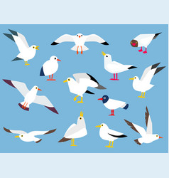 Cartoon atlantic seabird vector