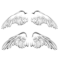 Wings sketch collection cartoon vector