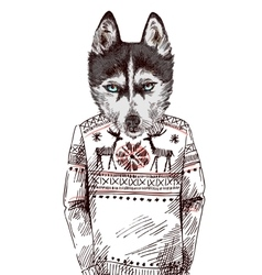 Husky in knitted sweater vector