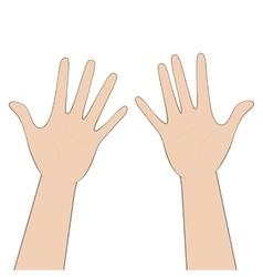 Women hands vector image vector image