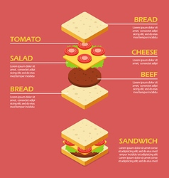 Isometric of sandwich ingredients infographic vector