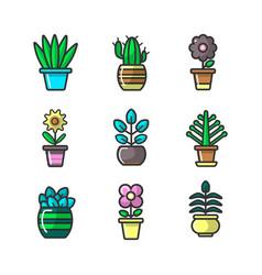 plants in flower pots decoration icons set vector image