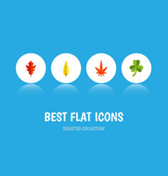 Flat icon leaves set of leaf frond maple and vector